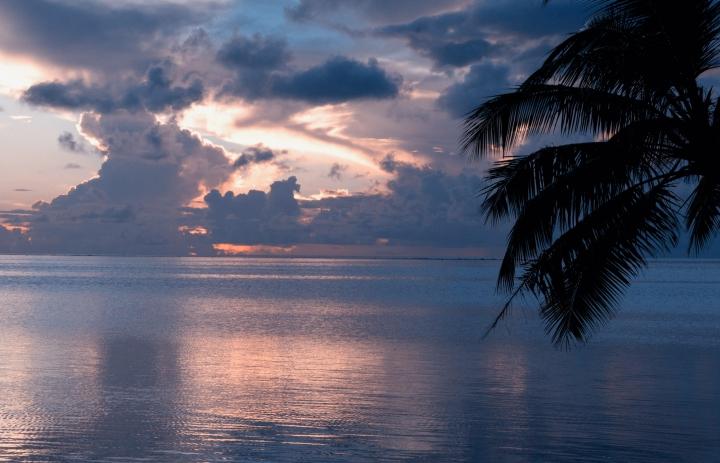 Tahiti-0105 (4 of 5)